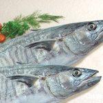 Cháo cá thu với rau xanh ngon cho bé biếng ăn