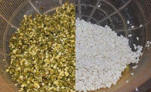 Đậu xanh và gạo vo sạch để ráo