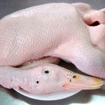 Khử mùi tanh của thịt vịt hiệu quả với gừng và rượu trắng